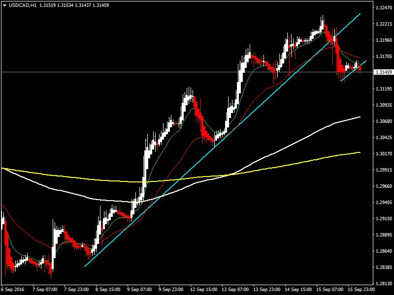acharts.mql5.com_12_507_usdcad_h1_hf_markets_sv.