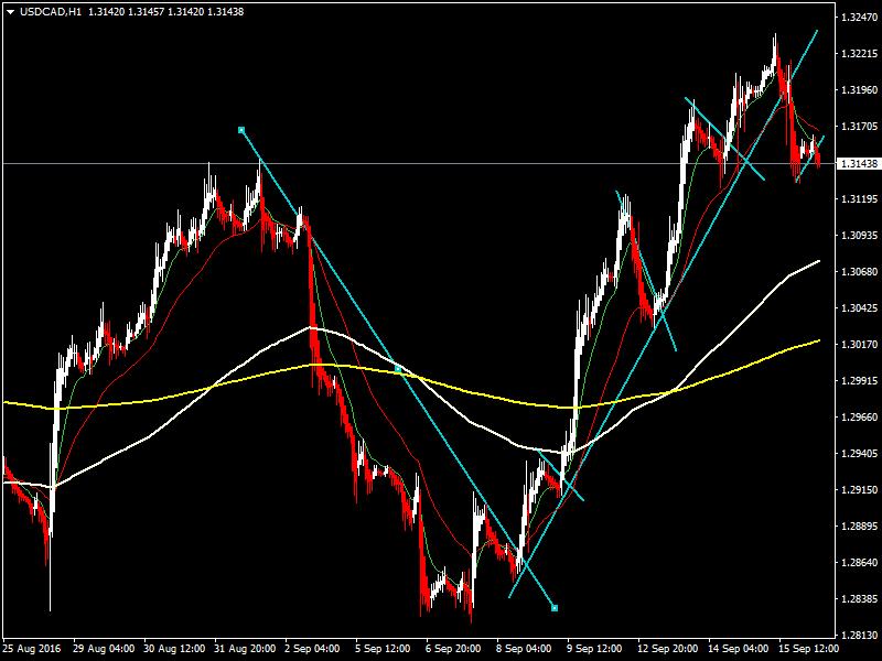 acharts.mql5.com_12_507_usdcad_h1_hf_markets_sv_3.
