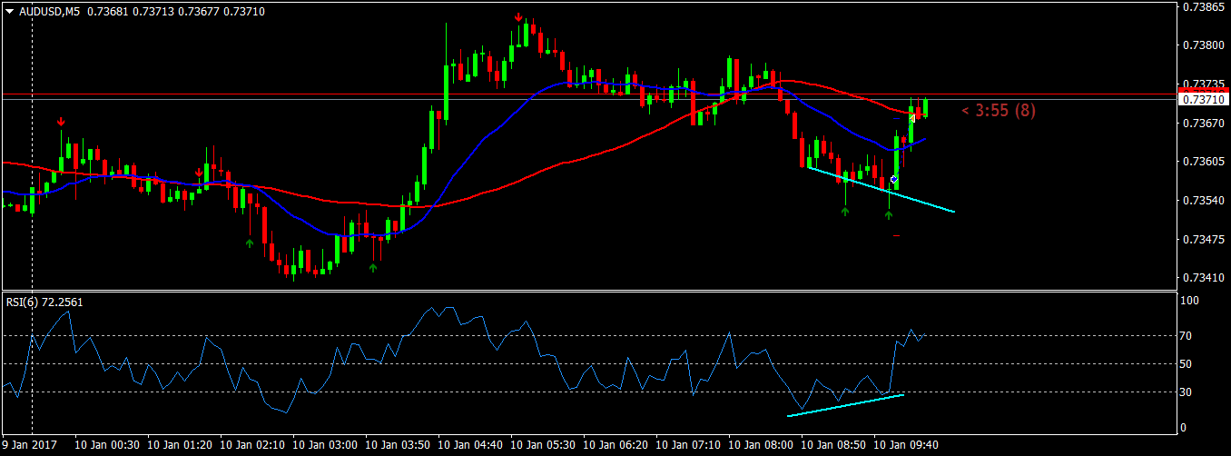 acharts.mql5.com_13_698_audusd_m5_fxtm_ft_global.
