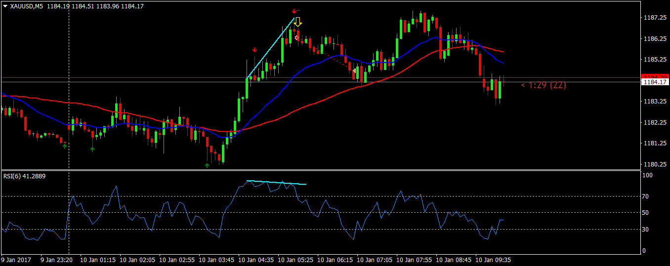 acharts.mql5.com_13_698_xauusd_m5_fxtm_ft_global.