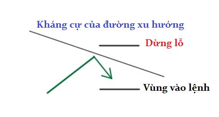 awww.traderviet.com_upload_duongnguyenhuy555_image_BABYPIPS_bounce_trendline2.