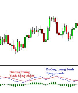 awww.traderviet.com_upload_duongnguyenhuy555_image_BABYPIPS_indicators_MACD2.