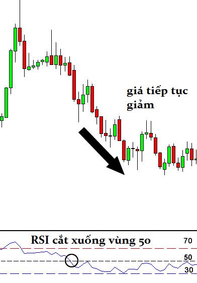 awww.traderviet.com_upload_duongnguyenhuy555_image_BABYPIPS_indicators_rsi3.