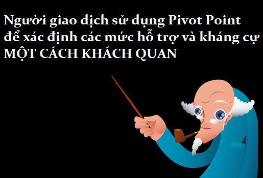 awww.traderviet.com_upload_duongnguyenhuy555_image_BABYPIPS_pivot_20point_pp7_1.