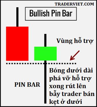 awww.traderviet.com_upload_duongnguyenhuy555_image_pinbar_PINBAR.