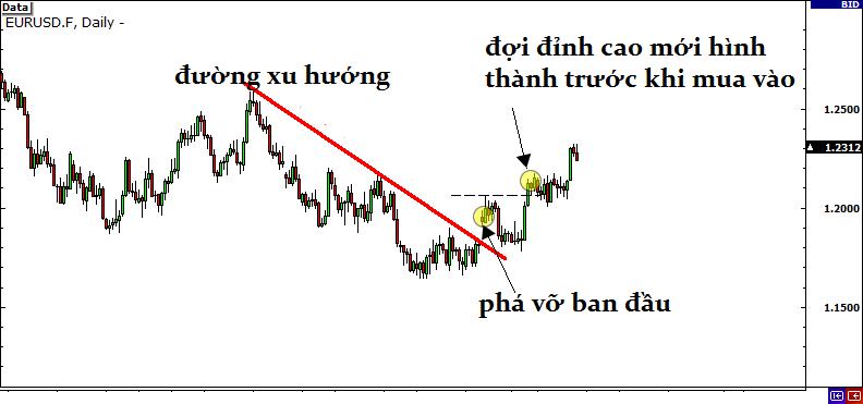 awww.traderviet.com_upload_hinh_anh_image_bbp_l136.