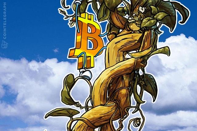 bitcoin đạt mốc 4000 usd.