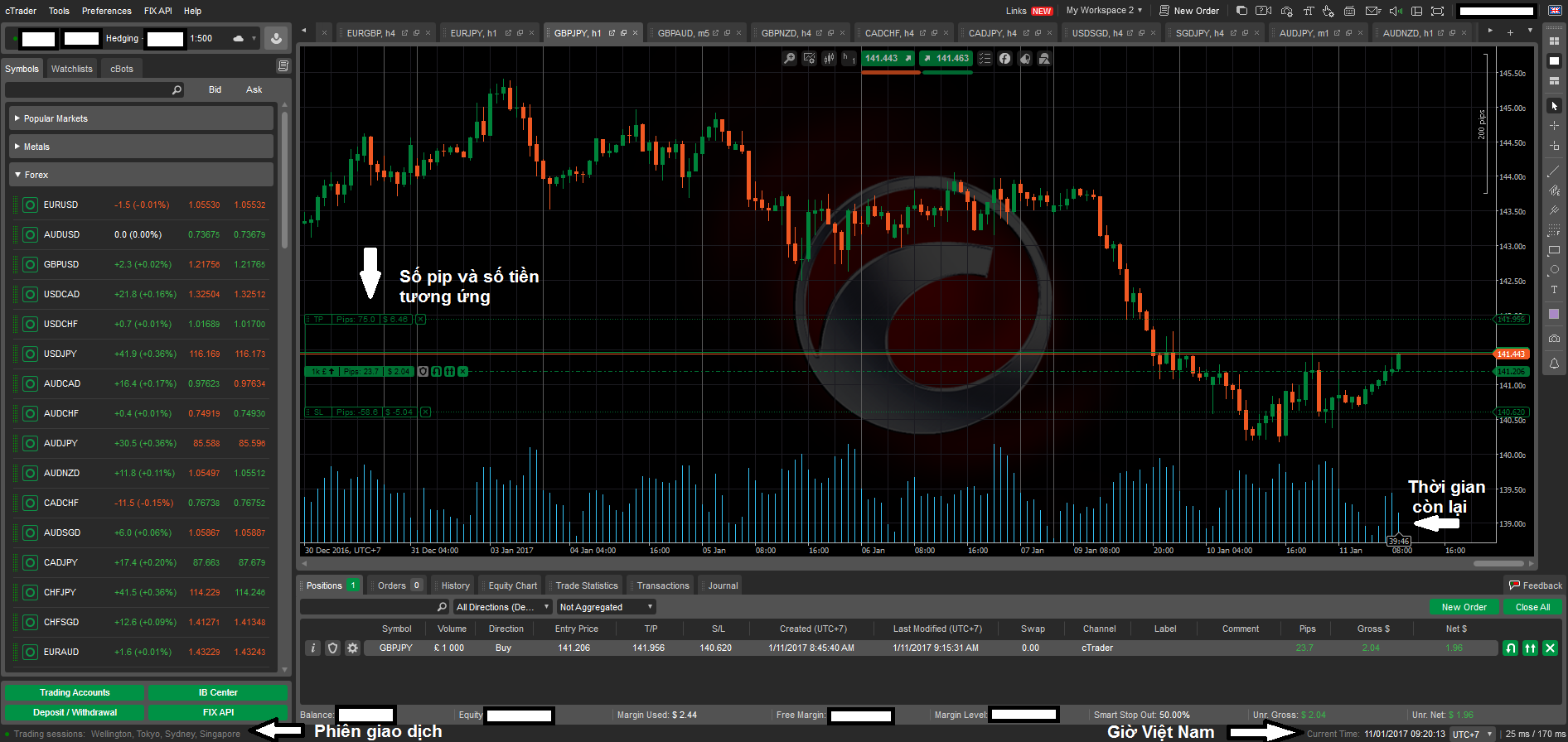 cTrader_example.