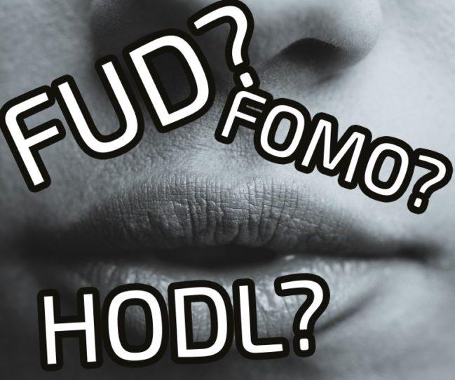 fud-traderviet1.