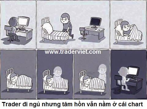 trader-hai-traderviet-2.