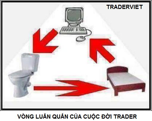 trader-hai-traderviet-3.