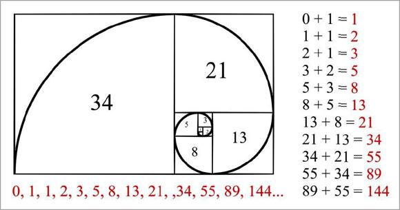tranh-cai-xoay-quanh-hai-muc-fibonacci-bi-an-traderviet-3.