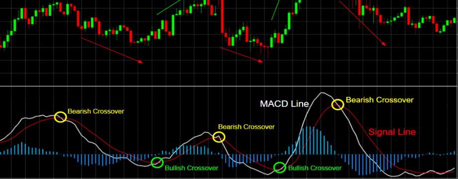 Hướng dẫn sử dụng MACD đúng chuẩn cho người mới | TraderViet